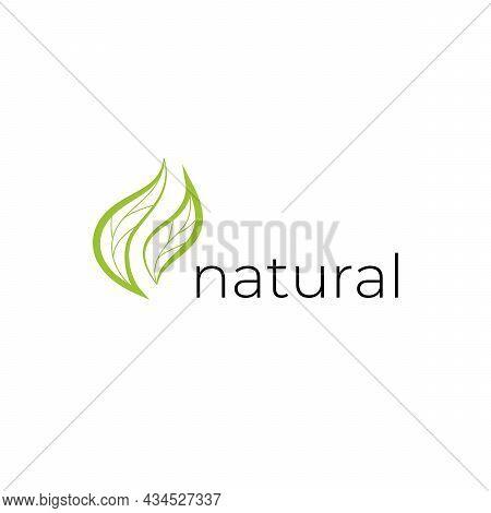 Natural Logo With Green Leaves. Natural, Eco. Natural Badge For Green Company.