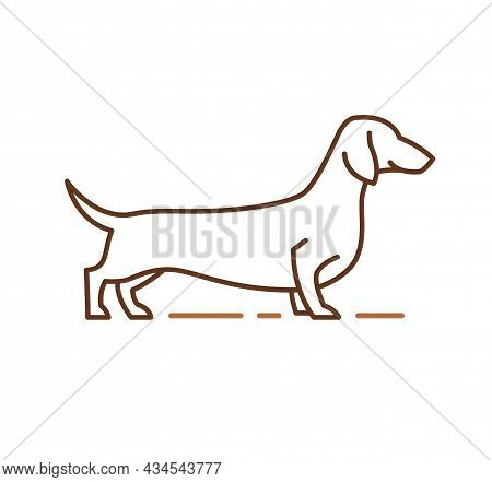 Dachshund Purebred Dog Line Icon, Pet Sign. Hand-drawn Outline Vector Illustration For Vet Clinic, P