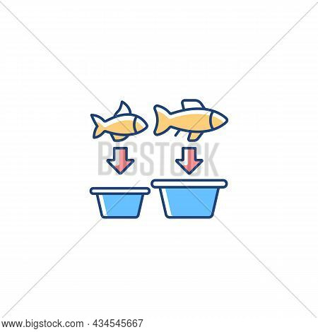 Fish Sorting Rgb Color Icon. Grading And Separating Seafood Products For Trade. Sorting Table And Ma