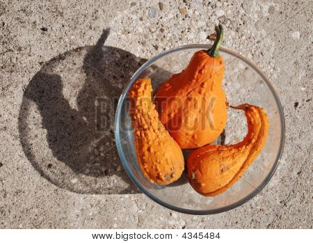 Three Orange Squashes In Bowl With Shadow