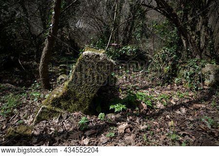 A Leaning Mossy Gravestone In An Ancient Cemetery In The Spring Forest.