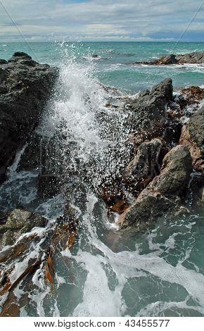 Crashing Waves, Rocks & Kelp
