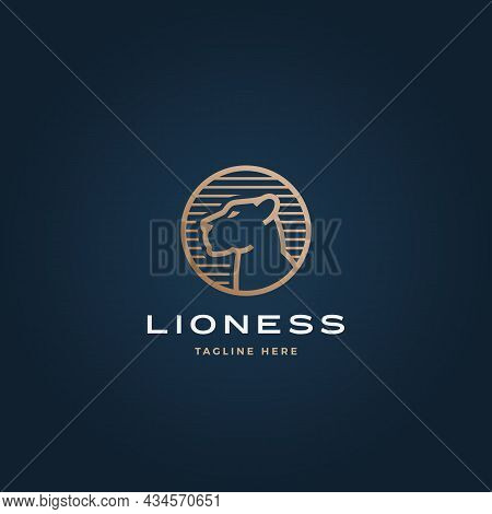 Lioness Face In A Circle Frame Abstract Vector Sign, Symbol Or Logo Template. Premium Gold Color Her