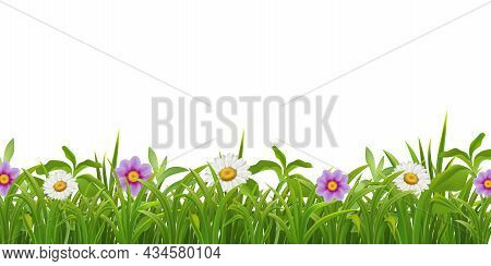 Luscious Green Grass Leaves Beautiful Flowers Natural Realistic Summer Border Seamless Pattern On Wh