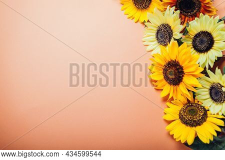 Bunch Of Yellow Orange Lime Sunflowers On Background. Group Of Fall Summer Flowers. Space