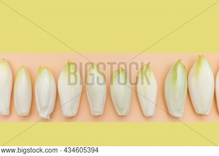 Many Raw Endives Salad Roots Or Chicory On Yellow And Orange Background, Top View, Healthy Organic M