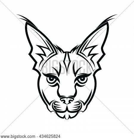 Black And White Line Art Of Wildcat Head. Good Use For Symbol, Mascot, Icon, Avatar, Tattoo,t-shirt
