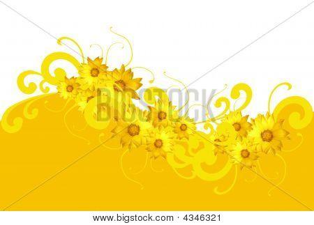 Springback