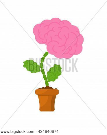 Brain In Flower Pot. Concept Education And Intellect