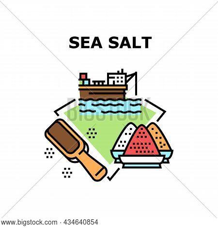 Sea Salt Production Vector Icon Concept. Sea Salt Production Factory At Seashore And Wooden Shovel K