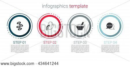 Set Hemoglobin, Human Kidney, Mortar And Pestle And Label For Eco Healthy Food. Business Infographic