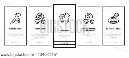 Pet Disease Ill Health Problem Onboarding Mobile App Page Screen Vector. Salmonellosis And Tapeworm,
