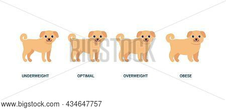 Body Mass Index Dog, Chart Weight Pet. Bmi Health, Underweight, Optimal, Overweight And Obese. House