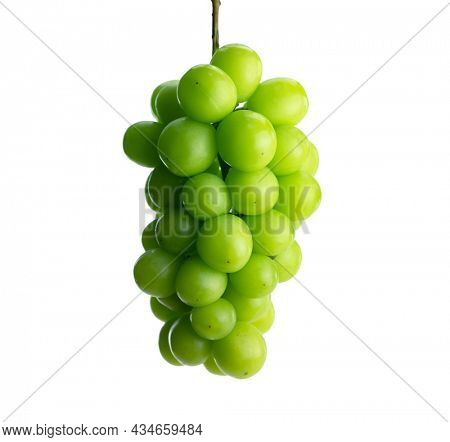Fresh harvested, plump green grape or muscat grape, hanging. Isolated on pure white background.