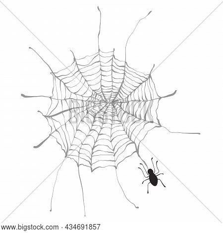 Drawn Spider Web With A Spider Holiday Halloween. Doodle Vector Illustration Use For Festive Decor D
