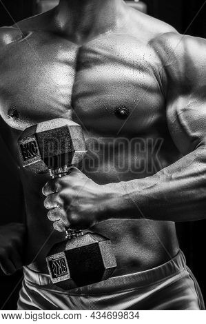 Close Up Body Of Athletic Man In The Gym