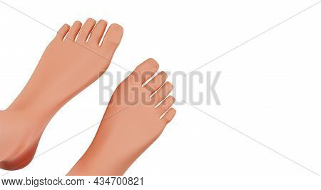 Female Feet, Top View. Female Legs Isolated On A White Background. The Concept Of Foot Care, 3d Rend