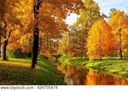 Golden Autumn In Alexander Park, Tsarskoe Selo (pushkin), Saint Petersburg, Russia