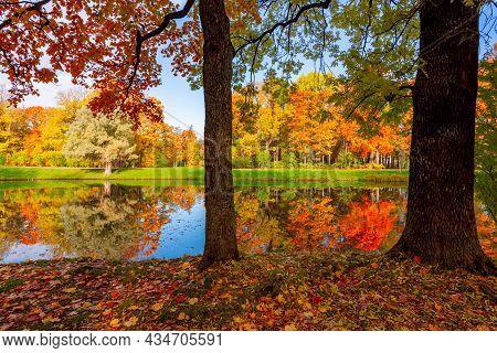 Alexander Park In Autumn, Pushkin (tsarskoe Selo), Saint Petersburg, Russia
