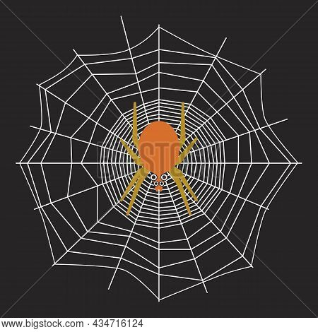 Poisonous Spider Crawls Along Web And Waits For Its Prey. Scary Arthropod On Web. Abstract Spiderweb