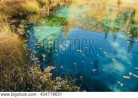 Yellow Autumn Leaves On Clear Water Surface Of Mountain Lake With Reflection Of Golden Trees In Suns