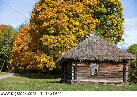 Traditional Russian Log House With Straw Roof And One Window In Front Of Autumn Lane With Yellow Aut