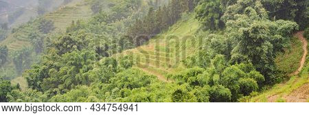 Banner, Long Format Rice Terraces In The Fog In Sapa, Vietnam. Rice Fields Prepare The Harvest At No