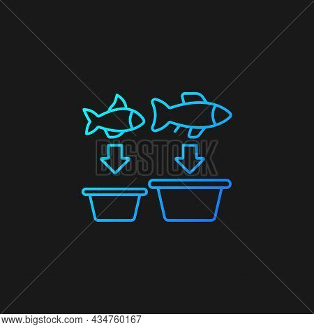 Fish Sorting Gradient Vector Icon For Dark Theme. Grading And Separating Seafood Products. Sorting T