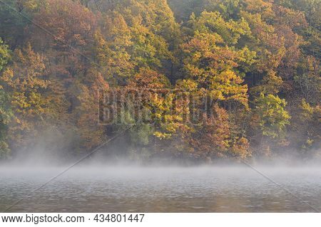 Autumn Landscape. Beautiful Colorful Leaves In Nature With The Sun. Seasonal Concept Outdoors In Aut