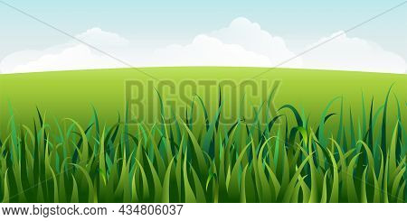 Horizontal Green Summer Landscape With Grass. Sunny Idyllic Spring Background With Green Meadows, Ru