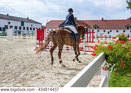 Horse Rider .  Beautiful Horse For Riding In Equestrian Sport