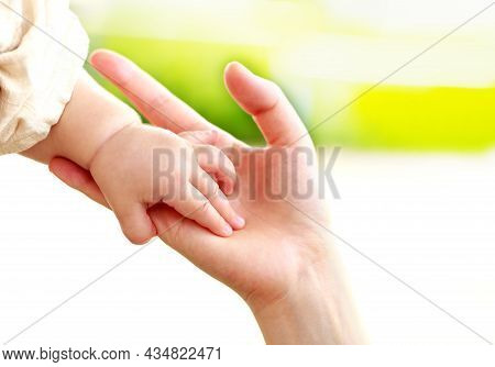 Family Scene , Close Up Parent And Baby Holding Hands Together And Green And White Background With C