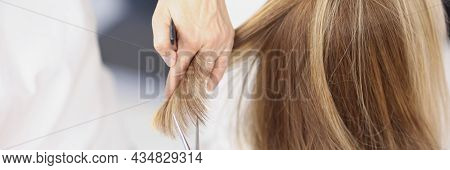 Master Hairdresser Cuts Ends Of A Client Hair In Beauty Salon