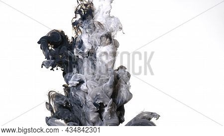 Awesome Abstract Background. Black And White Cloud Of Ink On A White Background. Colored Acrylic Pai