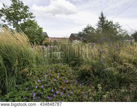 Saint-petersburg, Russia - August 15, 2021. Tourists And Locals Stroll Along Paths In Garden Of New