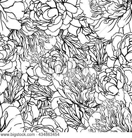 Beautiful Peony Seamless Pattern Design Enchanted Vintage Flowers. Hand Drawn Artistic Vector Illust