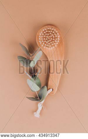 Natural Boar Bristles Exfoliating Dry Face Or Body Brush With Eucalyptus Leaves On Light Brown Backg