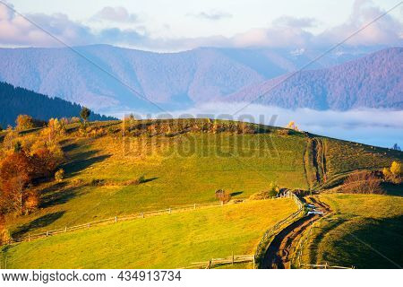 Rural Landscape Of Carpathian Mountains At Sunrise. Trees In Fall Foliage On Grassy Rolling Hills. C