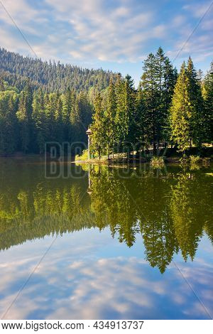 Lake Of Synevyr National Park At Sunrise. Gorgeous Summer Scenery Of Carpathian Mountains Reflecting