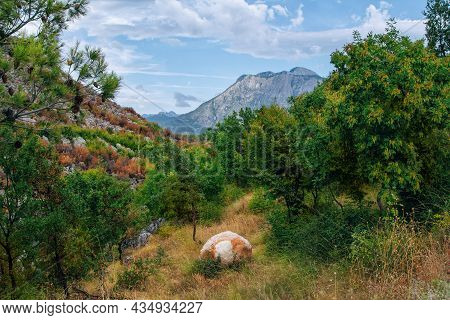View Of Canyon In Albanian Mountains. Summer Landscape With Green Trees, Rocky Hills And Blue Sky.