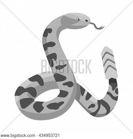 Isolated Object Of Serpent And Python Symbol. Graphic Of Serpent And Crawling Vector Icon For Stock.