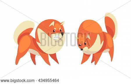 Playful Shiba Inu Or Akita Puppy As Japanese Breed Dog With Prick Ears Vector Set