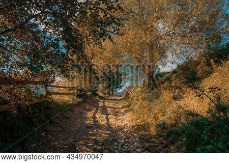 Autumn Rural Scene Country Side Path Way In Golden October Day Time Majestic Landscape View