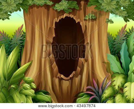 Illustration of a hole in a big tree