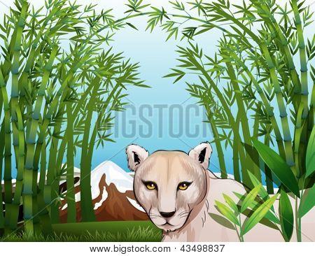 Abbildung eines unheimlich Tigers am Bambus Wald