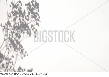 Trending Concept In Natural Materials With Plant Shadow On White Background. Presentation With Dayli