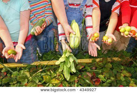 Children Hold Vegetables
