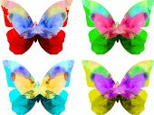 Watercolor butterfly isolated on white background in different colors poster