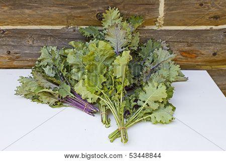 Fresh Cut Kale