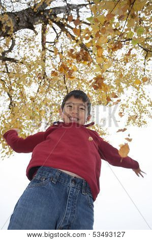 Boy Throws Leaves Up.